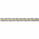 ELKO EP LED pásek, 19,2W, WARM WHITE, 240LED/m